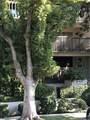 500 Oak Knoll Avenue - Photo 1