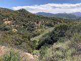 1113 San Vicente View - Photo 6