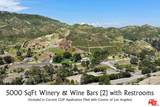 2714 Triunfo Canyon Road - Photo 26