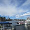 4104 Lake Harbor Lane - Photo 1