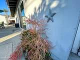 263 Princeton Avenue - Photo 4
