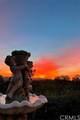 33470 Mirage Mesa Circle - Photo 35