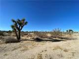 1234 Buena Vista - Photo 1
