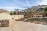 17308 Cremello Way - Photo 41