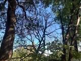 1291 Canyon Drive - Photo 3