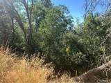 1291 Canyon Drive - Photo 21