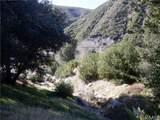0 Waterman Canyon Road - Photo 19