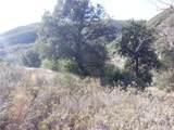 0 Waterman Canyon Road - Photo 4
