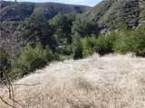 0 Waterman Canyon Road - Photo 5