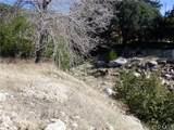 0 Waterman Canyon Road - Photo 9