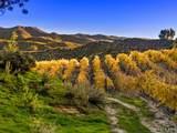 35600 Monte Verde Road - Photo 8