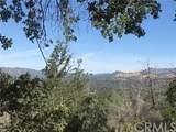 4521 Alamo Creek Road - Photo 1