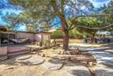 54950 Camino Del Cielo Court - Photo 37