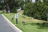 24001 Muirlands Boulevard - Photo 41