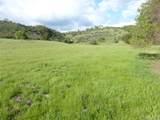 71825 Vineyard Canyon Road - Photo 12
