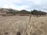 71825 Vineyard Canyon Road - Photo 19