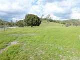 71825 Vineyard Canyon Road - Photo 6