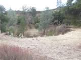 0 Vineyard Canyon (Parcel 29) Road - Photo 13