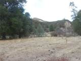 0 Vineyard Canyon (Parcel 29) Road - Photo 14