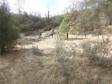 0 Vineyard Canyon (Parcel 29) Road - Photo 26