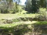 0 Vineyard Canyon (Parcel 29) Road - Photo 29