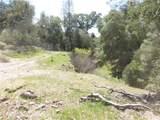 0 Vineyard Canyon (Parcel 29) Road - Photo 32
