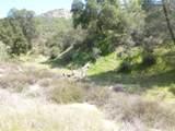 0 Vineyard Canyon (Parcel 29) Road - Photo 33