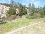 0 Vineyard Canyon (Parcel 29) Road - Photo 38