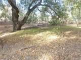 0 Vineyard Canyon (Parcel 29) Road - Photo 6