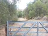 0 Vineyard Canyon (Parcel 29) Road - Photo 9