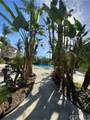 400 Acacia Avenue - Photo 7