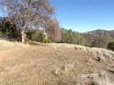 12523 Cerrito Drive - Photo 3