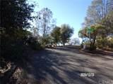 12523 Cerrito Drive - Photo 6