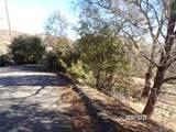12523 Cerrito Drive - Photo 7