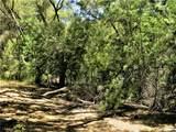 0 Tenaja Truck Trail - Photo 25