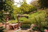 919 Rivas Canyon Road - Photo 37