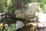 29963 Hook Creek Road - Photo 1
