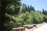 29963 Hook Creek Road - Photo 11