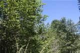 29963 Hook Creek Road - Photo 24