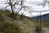 16559 Doe Trail - Photo 3