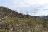 16559 Doe Trail - Photo 5