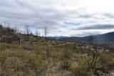 16559 Doe Trail - Photo 6