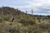 16559 Doe Trail - Photo 7
