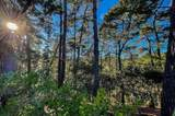 141 Del Mesa Carmel - Photo 7