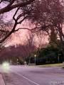 888 Linda Vista Avenue - Photo 30