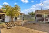 459 Bareback Court - Photo 40