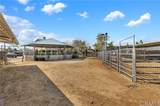 459 Bareback Court - Photo 41