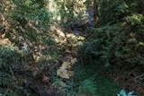 24510 Glenwood Drive - Photo 21