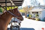 13181 Riviera Ranch Road - Photo 27