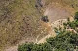 3948 Skelton Canyon Circle - Photo 4